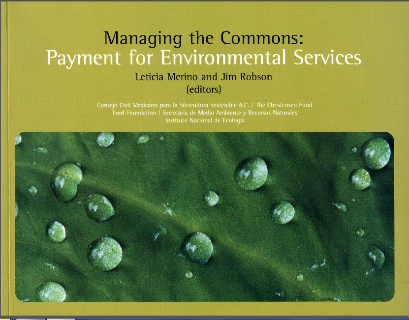 Portada de Managing the commons: