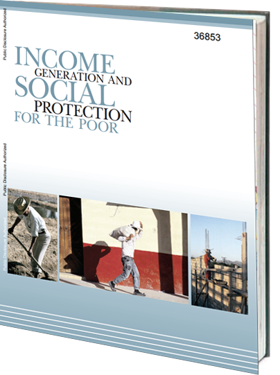 Portada de Income generation social protection for the poor